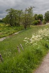 buitengoed (vanderlaan.fotografeert) Tags: rural ruralscene buitengoed 201505253303 aanhetmooistmeanderendedijkje