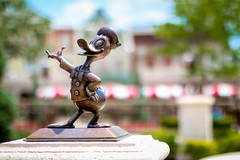 Donald Duck (oramos23) Tags: orlando florida bokeh disney wdw waltdisneyworld donaldduck magickingdom waltdisney disneyphotos