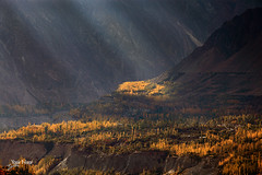 The Divine Light (Max Loxton) Tags: travel pakistan mountain mountains beauty valley peaks hunza autumntrees raysoflight baltistan yasirnisar pakistaniphotographer maxloxton