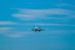 _MG_2904 (waychen_c) Tags: rctp tpe airplane airbus a350 xwb fwwcf aircraft