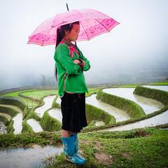 Vietnamese Girl on the Mountains near Sapa (Joni Kantonen) Tags: travel portrait people woman travelling gir