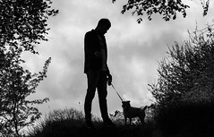 The dog and i. (CWhatPhotos) Tags: pictures camera portrait dog pet pets brown white black colour cute dogs monochrome animal animals silhouette digital portraits canon hair that jack photography mono countryside wire focus jrt foto russell with view image artistic pics sandy wide picture adorable silhouettes straw canine pic images holly have terrier photographs together photograph ii fotos jackrussell co type wired 5d colored rough breed haired coloured which silhouetted contain called terriers lensl cwhatphotos jackldl