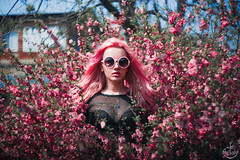 Pink sur (Asya-Cemeniel) Tags: pink flowers portrait nature strange mystery canon weird fancy mysterious mystical vladivostok sensuality quaint bizarre mystic cryptic helios