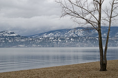 the quiet shoreline (L*Ali) Tags: nikond7000 bc lakeoakanagan oakanagan lali winter january 2016 blue mountain snow beach clouds