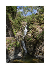 Aira Force (andyrousephotography) Tags: water stream poem beck lakes lakedistrict drop falls waterfalls poet nationaltrust daffodils verse airaforce ullswater glenridding williamwordsworth airabeck iwanderedlonelyasacloud howardfamily thesomnambulist watermillock greystokecastle