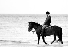 Horse on the beach (patrick_milan) Tags: sea people horse mer beach water cheval brittany ride bretagne cavalier rider ea plage personne