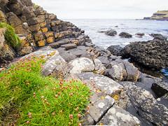 @ Giant Causeway, Ireland (Eric van Vessem) Tags: eric thomas belfast nathalie thijs ierland 2016 mei2016