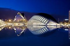 Ciudad de las Artes y las Ciencias de Valencia. (Eduardo Valdivia) Tags: valencia bluehour ciudaddelasartesylasciencias horaazul