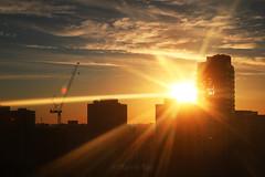 Good Morning, Golden City! (Katrin Ray) Tags: blue orange sun toronto ontario canada yellow clouds sunrise canon eos rebel star golden downtown may peach rays sooc 750d dreamscapesoftoronto katrinray t6i goodmorninggoldencity