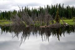 Alaska - July 2011 (www.fabricepierre-photographe.com) Tags: usa alaska landscape paysage