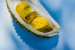 Durians (Syahrel Azha Hashim) Tags: travel light vacation food holiday detail colors fruits yellow fruit contrast 35mm prime colorful dof sweet getaway sony details seasonal naturallight nopeople delicious malaysia durian handheld carbohydrates shallow thorns simple spikes bitter flavour nutritious odour distinctive tropicalfruits riped a7ii colorimage exoticfruits dietaryfiber sonya7 strongodour syahrel ilce7m2 intensesmell