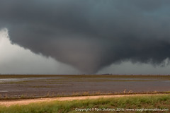 "Large Tornado near Perryton Texas • <a style=""font-size:0.8em;"" href=""http://www.flickr.com/photos/65051383@N05/27542412211/"" target=""_blank"">View on Flickr</a>"
