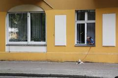 Berlin (annamartta) Tags: berlin city citybreak street houses
