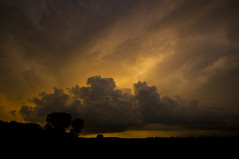and then ... came the storm (mariola aga) Tags: evening sunset sky clouds storm meadow trees silhouettes wideangle 1020mm sigma thegalaxy