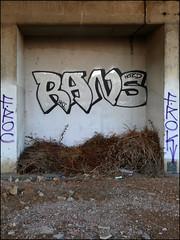 Rans (Alex Ellison) Tags: lwi rans northwestlondon trackside railway urban graffiti graff boobs