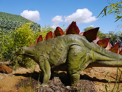 stegosaurus (hdc08) Tags: zoo dinosaur animal chill stegosaurus relax terrifying