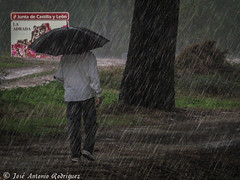 "Lluvia • <a style=""font-size:0.8em;"" href=""http://www.flickr.com/photos/133275046@N07/17554821903/"" target=""_blank"">View on Flickr</a>"