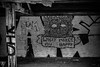_MG_3964 (jesse_tomasello) Tags: friends blackandwhite art mosaic shed vandals whatmakesyouhappy shedon72