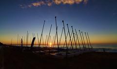 Mástiles.- (ancama_99(toni)) Tags: masts mástiles dawn amanecer sol sun mar sea mediterranean mediterraneo mediterrània mediterranee mediterráneo calafell tarragona catalonia catalunya cataluña spain españa nikon d7000 barcas boat 10favs 10faves 25faves 25favs 1000views 50faves 50favs barca bote puestadesol atardecer sunset