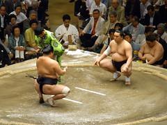 日馬富士 画像17