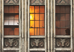 Three Rams (Philip Michael Photo) Tags: old city urban orange broken window architecture vintage colorado downtown denver metropolis rams