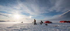 Svalbard 2016-1008 (Cal Fraser) Tags: camp people dog max dogs norway tents svalbard arctic parhelion sleddog sundogs spitzbergen nightline sledgedog sledgedogs gregmaxted surfacedrift
