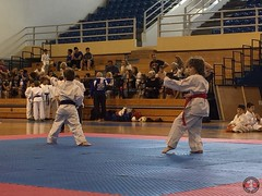 stefanou_15_5_2016_knockdown_81