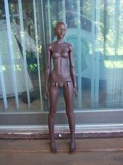 100_5013 (napoleonchan) Tags: amanda black beauty skin tan bean honey match 17 resin cocoa hybrid dollstown dollshe dollstown17