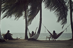Chillout (Pakinho10) Tags: sea beach relax island mar quiet talk playa palmeras palmtrees panam chillout amricacentral centroamrica desertisland hamacas franklinisland isladesierta tubasenika isladefranklin