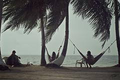 Chillout (Pakinho10) Tags: sea beach relax island mar quiet talk playa palmeras palmtrees panam chillout amricacentral centroamrica desertisland hamacas franklinisland isladesierta tubasenika isladefranklin