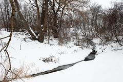703_3060 (M Falkner) Tags: urban black creek forest concrete woods tank flood drain management watershed exploration sewer overflow ue urbex cso draining keelesdale