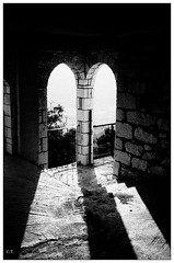of light and shadow (Christos Theofilogiannakos) Tags: agfaoptimasensor1035 kodaktrix hc110b 35mm film bw zonefocus