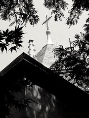 Faith always finds a way (williamw60640) Tags: frenchgothic church stitas catholicchurch cathedral chicago treebranches cross spire faith religiousicon roof