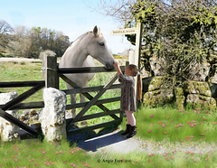Best Friends (rubyblossom.) Tags: lemonart background field meadow child girl granddaughter horse stroke love friend sign fence flowers grass rubyblossom rubystreasures 2016