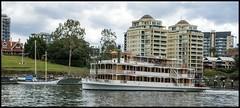 Kookaburra Paddle Boat passing by-2= (Sheba_Also 11.8 Millon Views) Tags: kookaburra paddle boat passing by