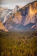 I Love You Too (Thomas Hawk) Tags: america california nationalpark usa unitedstates unitedstatesofamerica yosemite yosemitevalley fav10 fav25 fav50