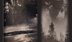 padurea vrajita (bemore [hopes]) Tags: spreewald reflections forest nature kanu wasser water canu