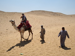 The Camel owners wanted to show us as much as possible, all for fee offcourse!
