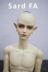 Soom Sard Night Odyssey FA (.Anova) Tags: night for doll bjd resin soom odyssey fa adoption sard
