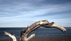 Lake Superior Driftwood (triciastark) Tags: wood blue lake beach water minnesota clouds rocks waves superior pebbles driftwood ripples twoharbors birdpoo