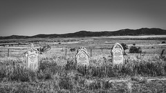 Wilson Cemetery (Filippo Pappalardo) Tags: cemetery bush tombstone australia settlers outback isolation southaustralia desolation flindersranges desolated
