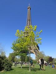 IMG_0704 (elizabeththe) Tags: paris france europe eiffeltower champdemars trocadero