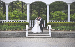 (sarajdsign) Tags: wedding groom bride pergola canapy