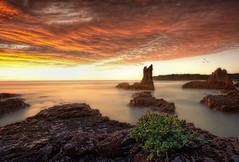 Every Breaking Wave (EmeraldImaging) Tags: autumn seascape clouds sunrise coast sydney australia nsw cathedralrocks cathedralrockcathedral rockkiamawollongongbombominnamurrasouth