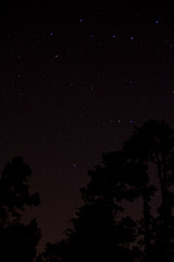 (Raven Murders Photography) Tags: trees canon stars astrophotography arkansas constellations dardanelle canon60d