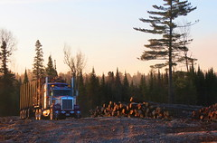 Monday Mornin' (jr-transport) Tags: ontario logger custom heavy kenworth w900 w900l cedarnarrows