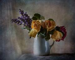 Unas flores robadas (saparmo) Tags: roses flores primavera dark spring lavender textures vase rosas texturas oscuridad lavanda jarrn