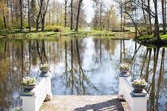 IMG_7556-2 (greta&eos) Tags: park flower sunshine pots manor