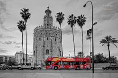 (123/16) The Red Bus (Pablo Arias) Tags: pabloarias espaa spain hdr photomatix nx2 photoshop nubes texturas cielo arquitectura torredeloro sevilla andaluca cutout rojo bus