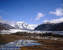 Svinafellsjökull reflection (wanderingYew2 (thanks for 3M+ views!)) Tags: 120 mamiya film mediumformat iceland nationalpark glacier 6x7 filmscan vatnajökull mamiya7ii glaciallagoon vatnajökullglacier svínafellsjökull svínafellsjökullglacier vatnajökulsþjóðgarður vatnajökullnationalpark